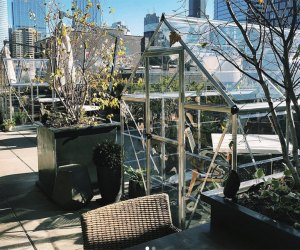 Dine in a greenhouse or on the heated patio at Aba's in Chicago