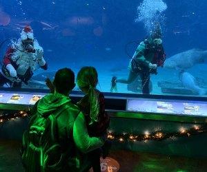 Meet Scuba Santa at the Adventure Aquarium. Photo courtesy of the Aquarium