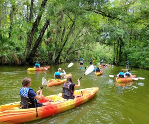 Orlando kayak rentals, like those from Adventure Outdoor Paddle, allow people to explore natural waterways.
