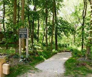 Alley Pond Park has many hiking trails