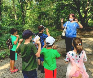 Join a science pod at Alley Pond. Photo courtesy of Alley Pond