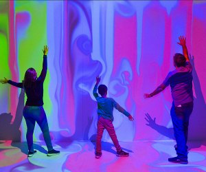 See the Nature of Color at AMNH