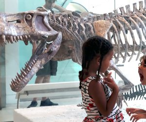 Girls with dinosaurs at AMNH indoor places to beat summer's heat