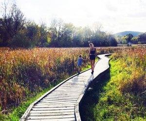 Stroll the Pochuck Boardwalk portion of the Appalachian Trail in Vernon, New Jersey