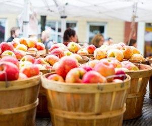 It's apple season! Photo courtesy of  Ravenswood Chamber of Commerce.