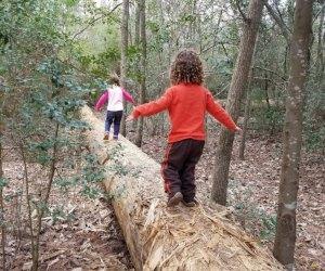 Tyke Hike at the Houston Arboretum and Nature Center/Photo courtesy Houston Arboretum