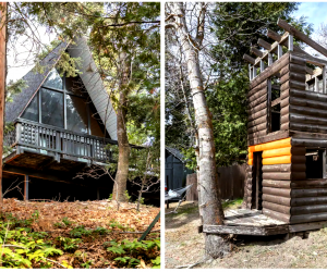 California Vacation Home Rentals for Families: One cabin to sleep in, one to play in.