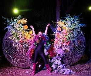 The DiscOasis at South Coast Botanic Garden: At night