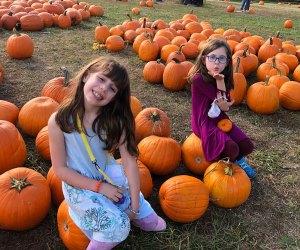 Pick the perfect pumpkin at Barry Patch Farm. Photo by Melanie Preis