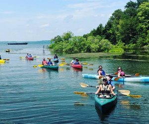 Paddle along on peaceful Mattawoman Creek via Atlantic Kayak Company.