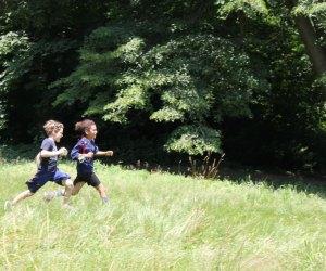Photo courtesy of Awbury Arboretum