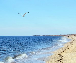 Sunset Beach offers beautiful views, a chance to hunt Cape May diamonds, and a slice of history. Photo courtesy of Cape May Beaches