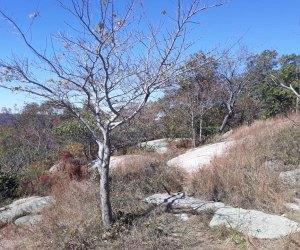 Bear Mountain State Park Westchester winter walks