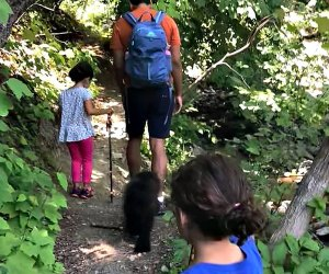 Bear Mountain State Park offers a great first hike for kids. Photo by Samara Sweig