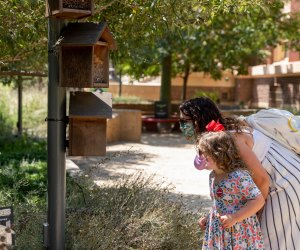 Things To Do on Mother's Day in LA: NHM Nature Gardens