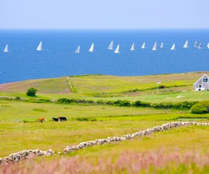 Explore Block Island on a summer day trip