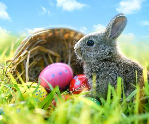 What kid does't want to get a basket full of candy and eggs on Easter! Photo via Bigstock