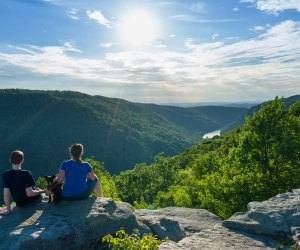 Take in the view of Cheat River Canyon from Raven Rock in Coopers Rock State Forest