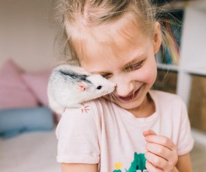 101 Fun Facts That Will Blow Your Kids' Minds: Rats are ticklish