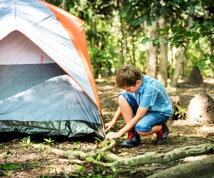 Put your young helpers to work and you can all sleep under the stars this weekend.