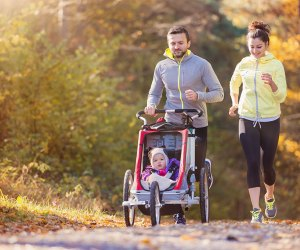 Load up the kids and strollers, and check out these stroller-friendly walks.