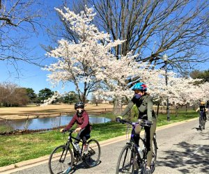 Re-create President Lincoln's famous walk on bike. Photo courtesy of DC Cycling Concierge