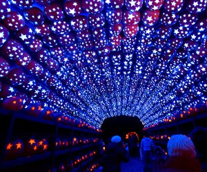 Tour the Great Jack O'Lantern Blaze, an annual rite of fall. Courtesy Historic Hudson Valley