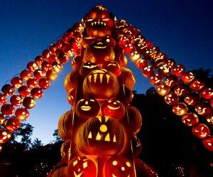 Great Jack O'Lantern Blaze is a fun fall day trip destination