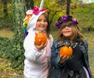 For a kindler, gentler Halloween, try Beardsley Zoo's Boo at the Zoo. Photo by Ally Noel