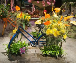 Get a taste of spring. Photo courtesy of the Boston Flower and Garden Show