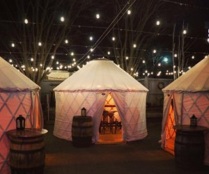 The Bowery Bar Yurt