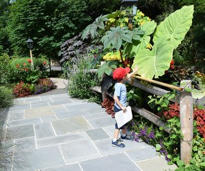 Kids and grown-ups alike will love exploring the lush gardens at Reeves-Reed Arboretum.