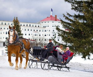 Bretton Woods Stables offers sleigh rides across the grounds of the Omni Mount Washington resort. Photo  courtesy of the resort