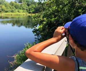 Bring your binoculars and spy some wildlife around the Quogue Wildlife Refuge pond.