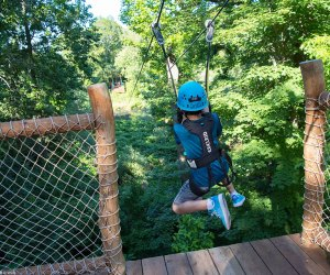 Test your comfort zone at the Bronx Zoo's Treetop Adventure..