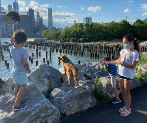 Brooklyn Heights is well-loved by local families for its abundance of green space, kid-friendly eats, and historic charm.