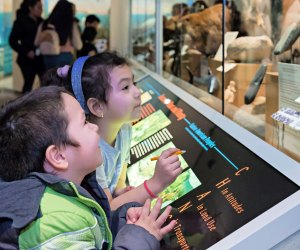"""Be a """"science solver"""" this weekend at the Bruce Museum. Photo by Carola Muis"""