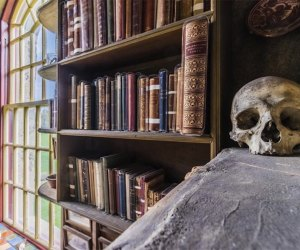 bookshelves and a skull on shelf