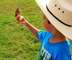 Bugstock is a great outdoor activity for kids this weekend. Photo courtesy of buffalobayou.org
