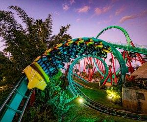Enjoy the thrill rides at Busch Gardens - if you dare. Photo courtesy of Busch Gardens