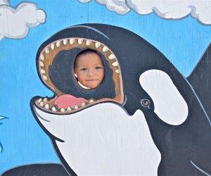 Celebrate the gray whale. Photo courtesy of Cabrillo Marine Aquarium