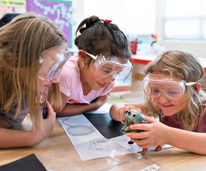 Free And Cheap Summer Camps Los Angeles Parents Should Know About