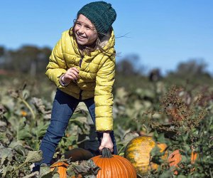 Harbes Family Farm overflows with seasonal fun and pumpkins for picking. Photo courtesy of the farm