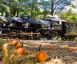 Take the Great Pumpkin Train to the pumpkin patch while enjoying the beautiful scenery. Photo courtesy of Delaware River Railroad Excursions