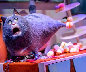"""The all-new ride """"The Secret Life of Pets: Off the Leash!"""". Universal Studios Hollywood"""