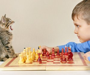 101 Fun Facts That Will Blow Your Kids' Minds: Cats only meow at people.