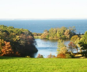 On a clear day, visitors to Caumsett State Park can glimpse across Long Island Sound to the Connecticut  coastline.