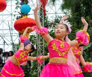 Spend the day at the Aon Grand Ballroom at Navy Pier for an afternoon celebration of Chinese New Year. Photo courtesy of Navy Pier