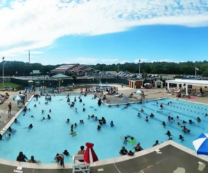 Arrive early at Centereach Pool. The community pool tends to fill up with swimmers on hot summer days. Photo courtesy of the Town of Brookhaven
