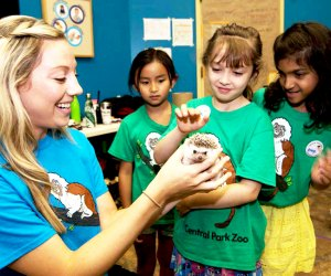 Kids discover how animals interact with the world around them thanks to hands-on exploration at the Central Park Zoo.